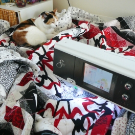 Quilting - my cat always found the newest quilt to lie on....